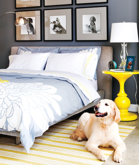 Personal touch Having a beautiful bedroom doesn't mean it needs to be void of personal items. The homeowner of this space opted for doggy photography rather than artwork or prints.