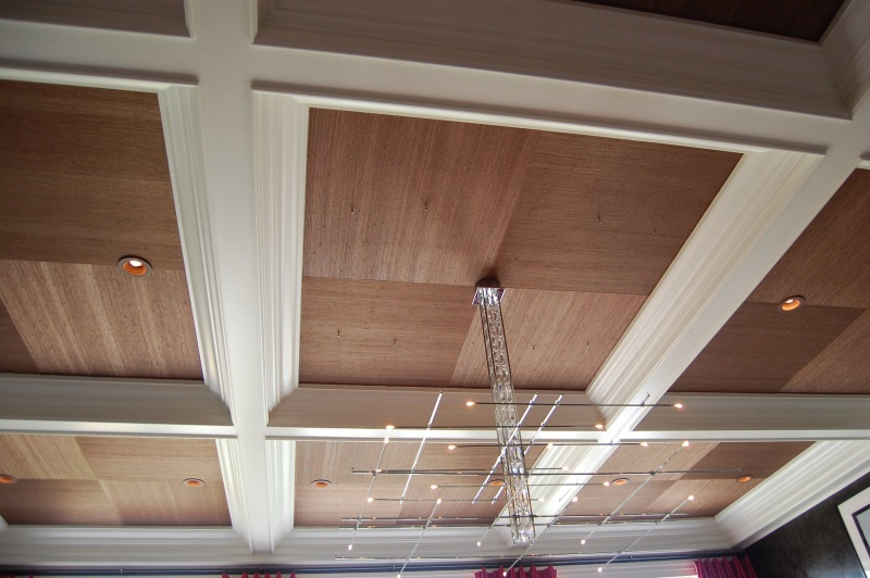 http://www.shelterness.com/50-ceiling-design-ideas/