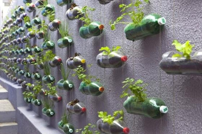 USE PLASTIC BOTTLES AS GARDEN PLANTERS