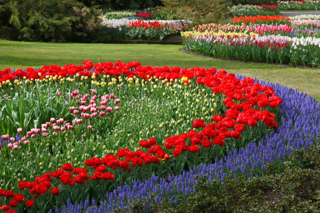 Fantastic flower bed ideas for Flower garden designs