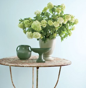 soft blue paint-benjamin moore breath of fresh air