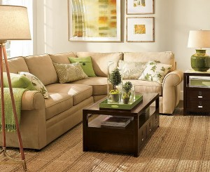 green-and-brown-livingroom-decoration-ideas9
