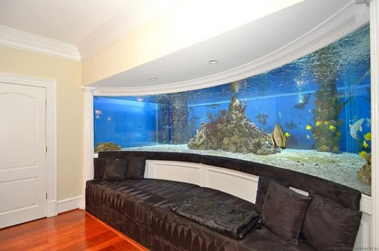 A comfortable place to sit and relax while enjoying the fish