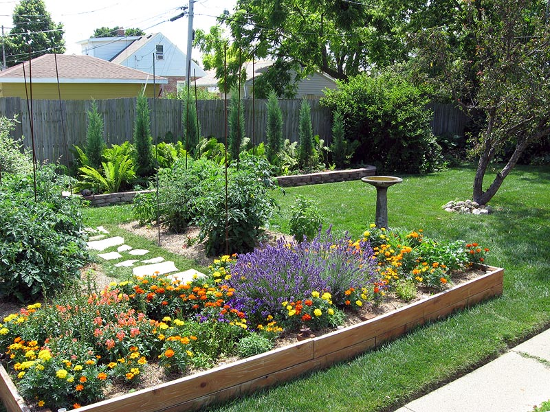 Raised beds for easy low maintenance backyard gardens for Back garden landscaping ideas