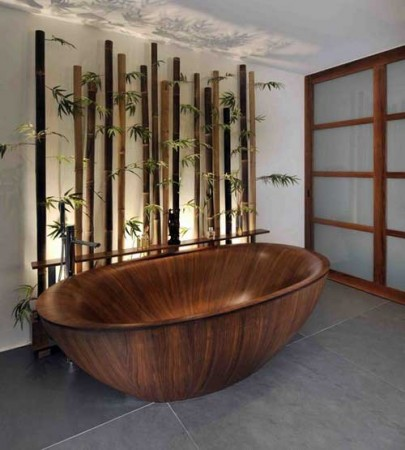 Beautiful organic bathtub