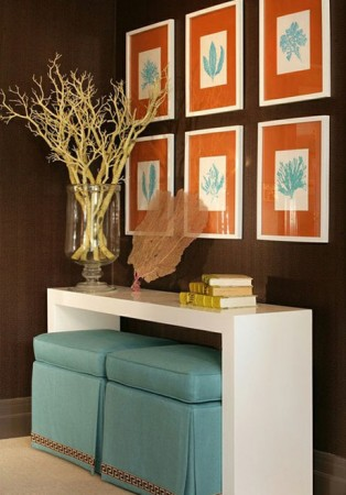 Balanced colors of aqua and coral are demanding against a brown wall