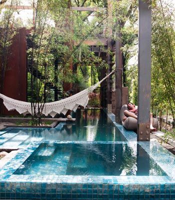 Hammocks and overgrown trees add a bohemian edge to a luxury home (pinterest.com)