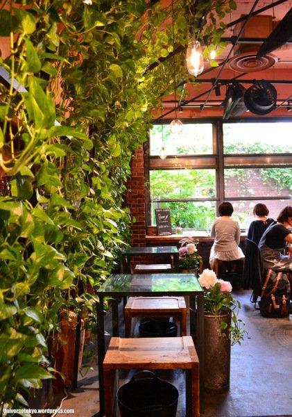 The plants liven up the entire tea house (universotokyo.com)