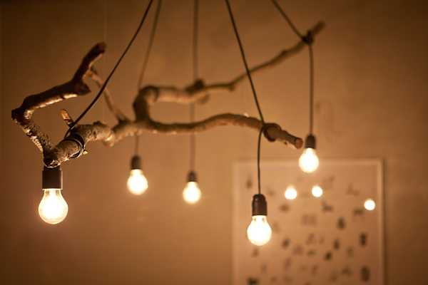 Edison bulbs strung around a branch answer to the trends