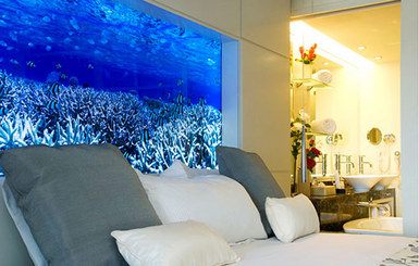 acquarium headboard
