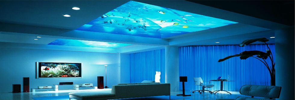 Fantastic Aquarium Installed On The Ceiling Livinator