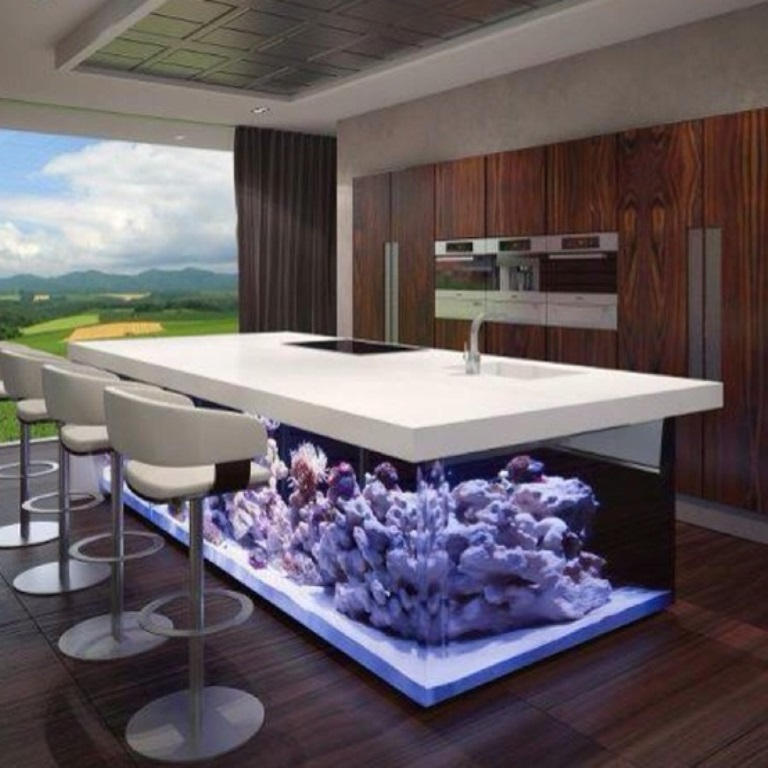 Perfect Modern Aquariums Can Be Used As Elegant Tables