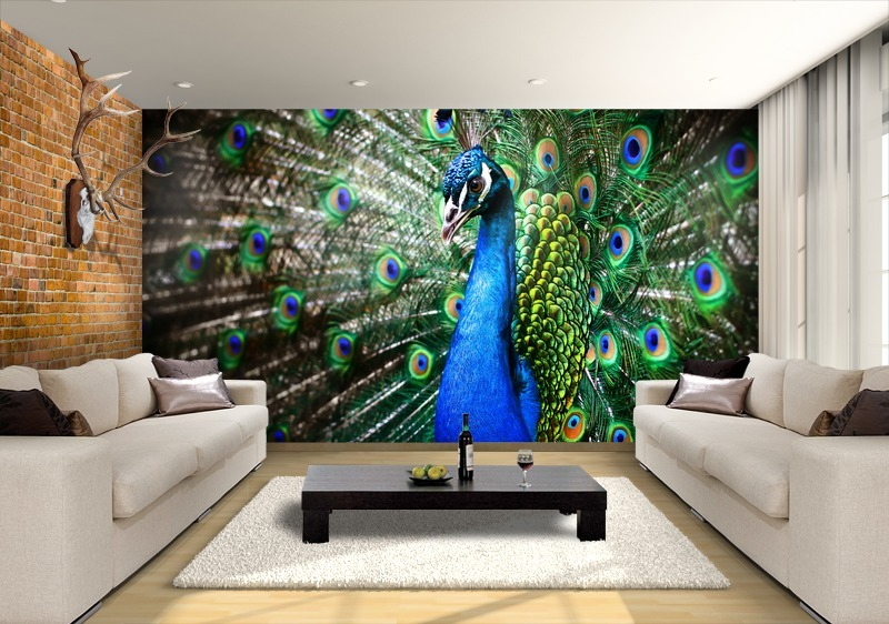 peacock inspired living room. Extravagant peacock mural  starscapes Peacock wall Inspiring Beauty for Your Home
