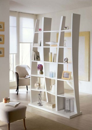 Stylish bookcase as room divider