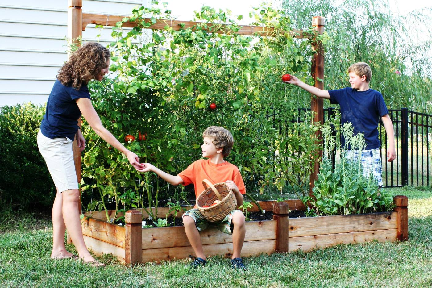 How to make your home and garden more earth friendly for Small kitchen garden plans