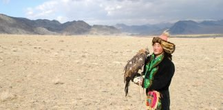 Man in Kazakh clothing with golden eagle in desert