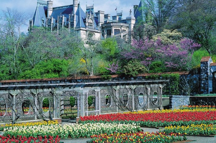 biltmorespring_ashevilleconnections.com