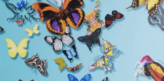 Butterflies take flight in wallpaper