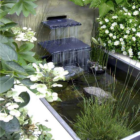 A Hanging Flower Pond